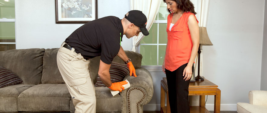 Hartford, CT carpet upholstery cleaning